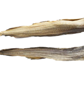 Stockfish Dried Tusk (oporoko/panla)