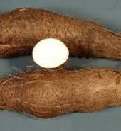 Water Yam (Small Tuber)