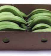 Green Plantain Half Box